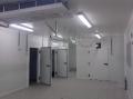 Construction d'ateliers pour l'industrie alimentaire